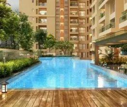 sobha nesara premium luxurious homes kothrud pune - NESARA swimming pool - Sobha Nesara Premium Luxurious 3, 3.5 & 4.5 BHK apartments in Kothrud, Chandani Chowk